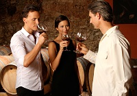 Things to Do in Bordeaux: Take a Wine Course at an Authentic Wine School