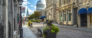Montreal – something for everyone (and I do mean everyone!)