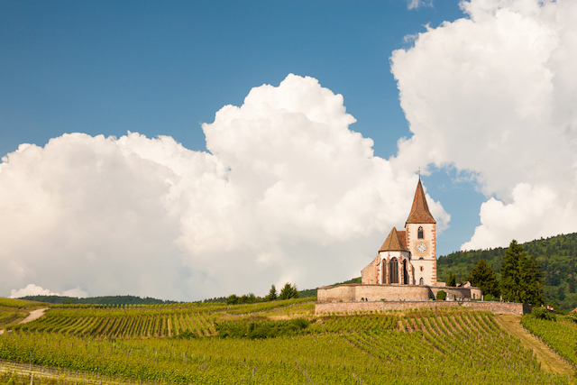 The Burgundy Wine Region of France